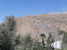 290 متر زمین در ابنیک  در شیپور-عکس کوچک
