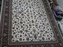 فرش نو دست نخورده فروشی در شیپور-عکس کوچک
