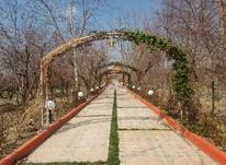 5000 متر باغ ویلا در شهریار در شیپور-عکس کوچک