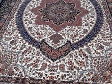 فرش  جفت  9 متری  700 شانه  2550 تراکم دست بافت گو در شیپور-عکس کوچک