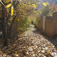 باغ در متراژ مختلف لواسان بزرگ در شیپور-عکس کوچک