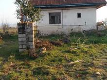 فروش خانه کلنگی 6000متر با زمین باغ وشالیزار در شیپور-عکس کوچک