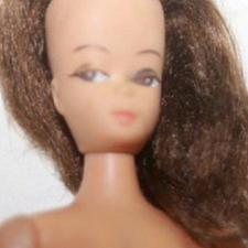خریدار عروسک باربی این مدل در شیپور-عکس کوچک