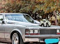 اجاره ماشین عروس خودرو کلاسیک . در شیپور-عکس کوچک