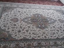 فرش تافته دوتا دوازده متری دوتا نه متری در شیپور-عکس کوچک