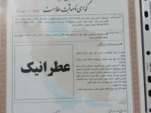 ثبت برند شرکت و اخذ کارت بازرگانی در کاشان در شیپور-عکس کوچک