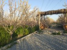 باغ در باغستان شهریار(باباسلمان) در شیپور-عکس کوچک