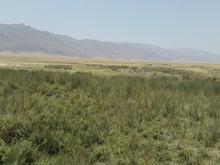 290,000متر زمین با سند سیم سرب با دو چشمه اب در شیپور-عکس کوچک