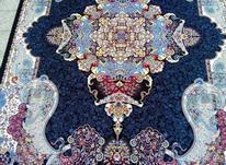 فرش کاشان درجه یک در شیپور-عکس کوچک