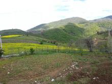 3000 متر زمین با سازه در زیباترین نقطه در شیپور-عکس کوچک