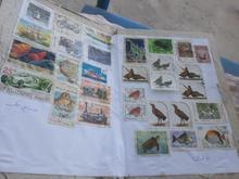 کلکسیون تمبر ایرانی و خارجی در شیپور-عکس کوچک