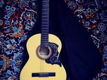 گیتار کلاسیکال  در شیپور-عکس کوچک