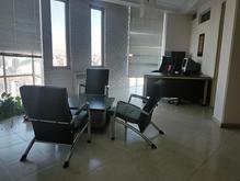 استخدام سئو کار خانم در شیپور-عکس کوچک