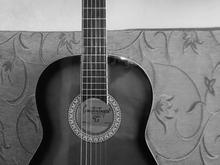 اموزش گیتار در شیپور-عکس کوچک