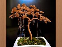 آموزش ساخت درختچه های تزیینی در منزل خودتان در شیپور-عکس کوچک