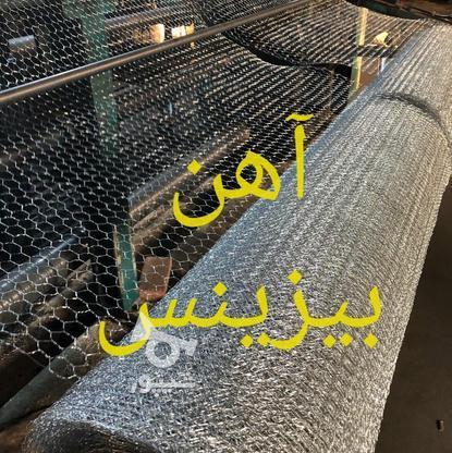 توری فرنگی توری بچه گابیون   فنس فرنگی  تولید توری فرنگی در گروه خرید و فروش خدمات و کسب و کار در تهران در شیپور-عکس1