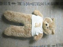 خرس یک متری پشمالو در شیپور-عکس کوچک