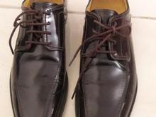 کفش ملوین&همیلتون 40 در شیپور-عکس کوچک