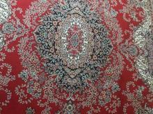 فرش6متری 500شانه در شیپور-عکس کوچک