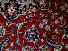 فرش12متری قرمز  در شیپور-عکس کوچک