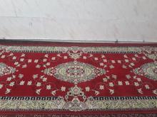 کناره فرش سالم در شیپور-عکس کوچک