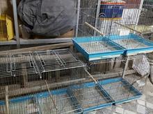 قفس های قیمت مناسب  در شیپور-عکس کوچک