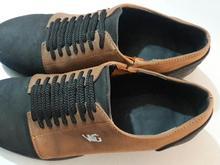 دوجفت کفش نو در شیپور-عکس کوچک