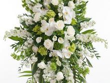 تاج گل - نماد همدردی-استند ترحیم در شیپور-عکس کوچک