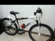 دوچرخه ویوا اصل در شیپور-عکس کوچک