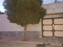 216 متری دوطبقه بازسازی واقع در خیابان 17 شهریور  در شیپور-عکس کوچک