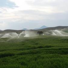 300000 متر  زمین کشاورزی-آبیاری بارانی-دامداری در شیپور-عکس کوچک