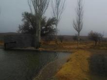 زمین کشاورزی پسته 35 هکتار سمت کرمان در شیپور-عکس کوچک