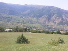 زمین مسکونی گیلان خورگام گردویشه4110متر در شیپور-عکس کوچک
