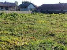 زمین مسکونی 3000 متر  در استان گیلان در شیپور-عکس کوچک