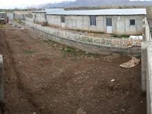 300متر سالن دامداری جهت پرورش  گوسفندو بوقلمون و ش در شیپور-عکس کوچک