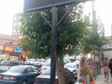 تابلو روان ونوشته تابلو چلنیوم در شیپور-عکس کوچک