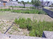 فروش زمین در چالوس محله330 متر  در شیپور-عکس کوچک