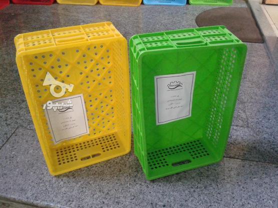سبد حمل خرما در گروه خرید و فروش کسب و کار در کرمان در شیپور-عکس1
