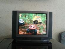 تلویزیون پاناسونیک 21 در شیپور-عکس کوچک