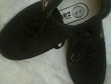 کفش پسرانه در شیپور-عکس کوچک