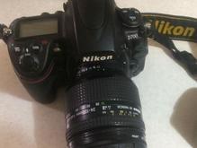 Nikon D700 - 24-120D در شیپور-عکس کوچک