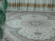 فرش دوازده متری فروشی در شیپور-عکس کوچک