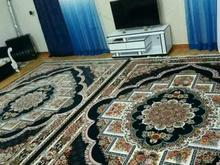 فرش ناردون در شیپور-عکس کوچک