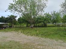 زمین با کاربری مسکونی در شیپور-عکس کوچک