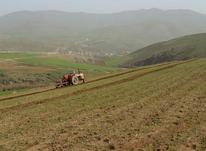زمین کشاورزی 1357  متری  در شیپور-عکس کوچک