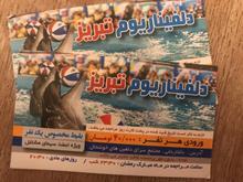 دلفیناریم تبریز در شیپور-عکس کوچک