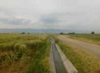 فروش زمین 6000 هزار متری کشاورزی در شیپور-عکس کوچک