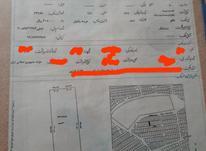 300 متر زمین ایرانشهر در شیپور-عکس کوچک