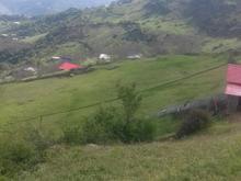 زمینی در ییلاق لیماکده 200 متر  در شیپور-عکس کوچک