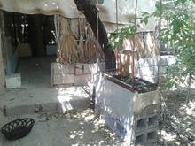 باغ پرازدرخت میوه در شیپور-عکس کوچک